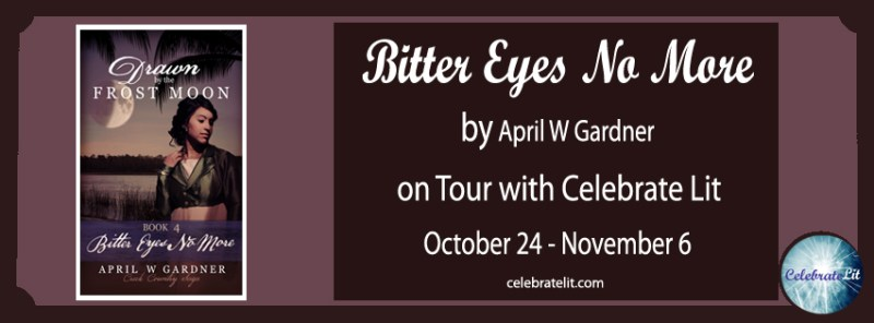 bitter eyes no more celebration tour FB banner copy