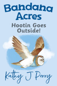 HOOTIN GOES OUTSIDE!_CVR4 copy