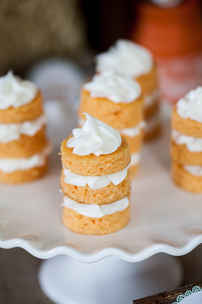 Rustic Fall Little Pumpkin Baby Shower Ideas - Mini Naked Cakes
