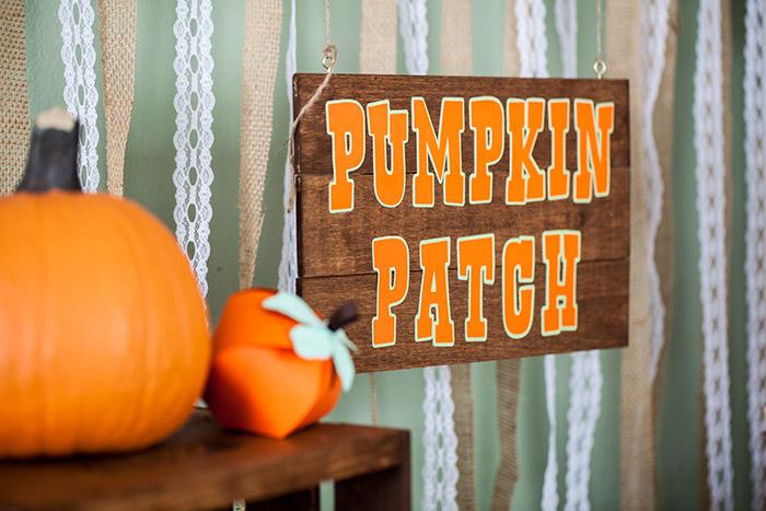 Little Pumpkin Rustic Fall Shower Ideas - Pumpkin Patch Sign