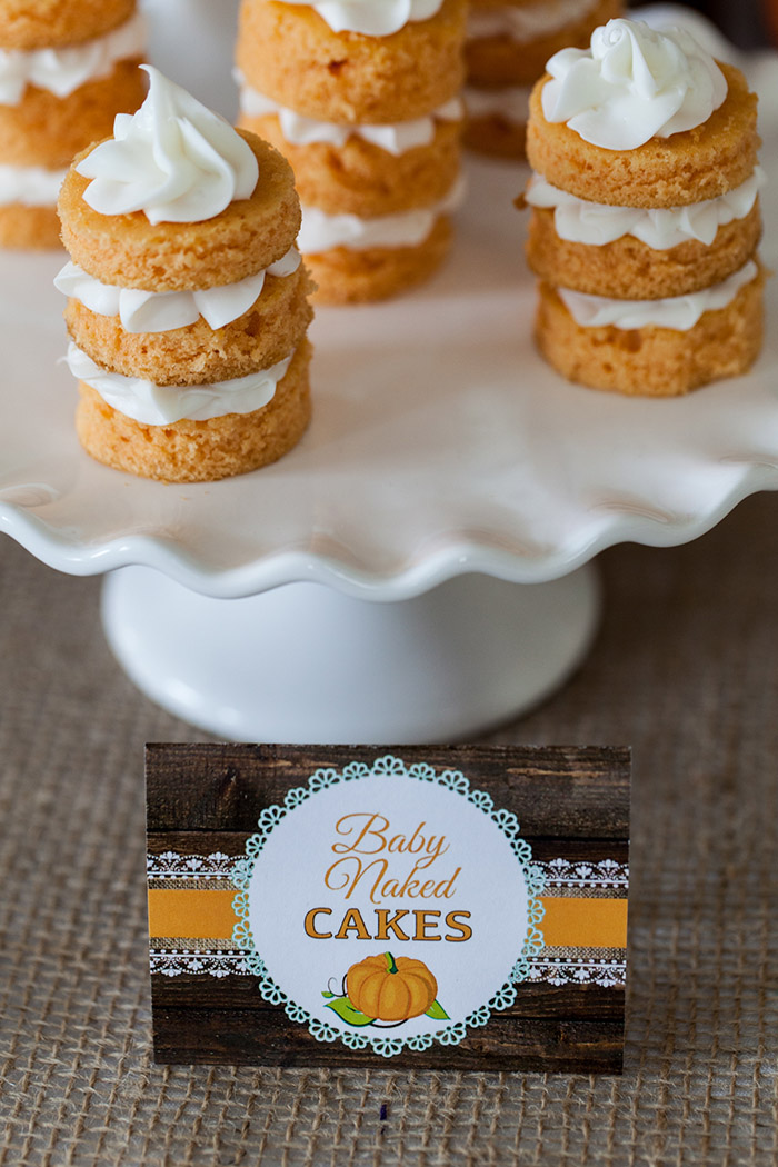 Rustic Fall Baby Shower Ideas - Little Pumpkin Theme - Mini Naked Cakes