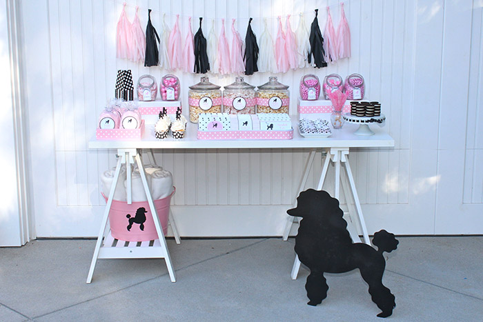 Pink Poodle Skirt Birthday Party Sweets Table