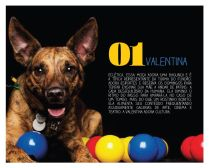 Valentina-Janeiro2014-1