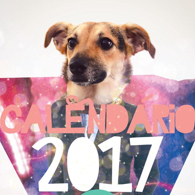 Calendário de parede - 2017