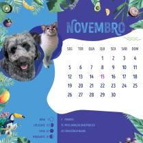 Calendario-201825
