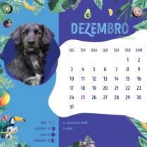 Calendario-201827