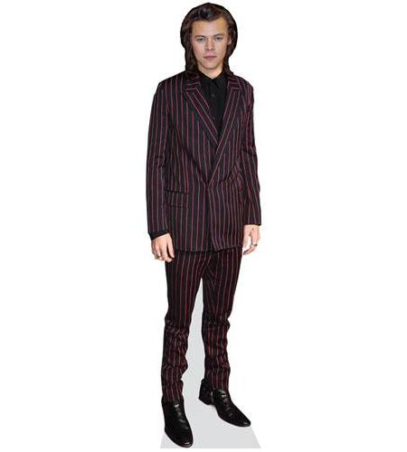 Harry Styles 2015 Cardboard Cutout