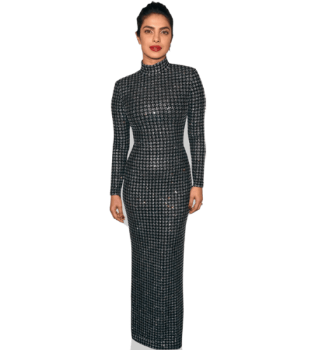 Priyanka Chopra (Silver Dress)