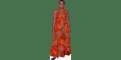 Adjoa Andoh (Dress)