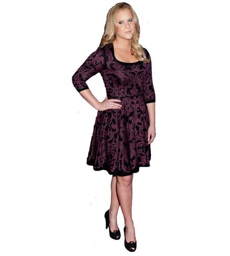 A Lifesize Cardboard Cutout of Amy Schumer wearing a dress
