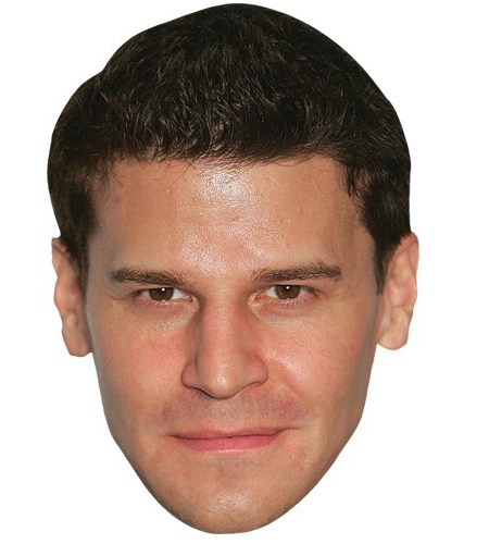A Cardboard Celebrity Mask of David Boreanaz