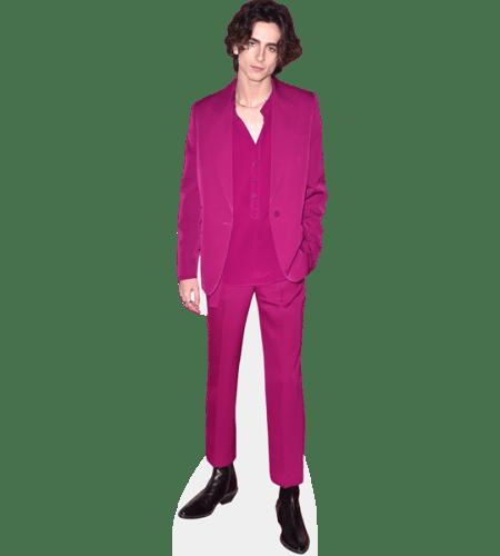 Timothee Chalamet (Purple Suit)
