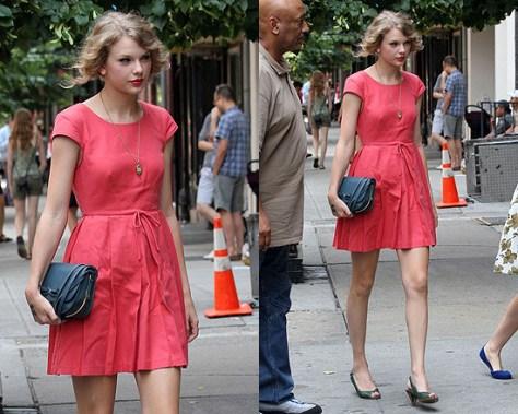 Taylor Swift in Twenty8Twelve Daisy Dress
