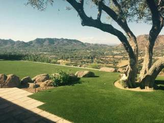 Paradise Valley artificial grass