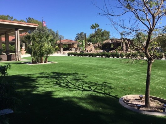 Arizona artificial grass