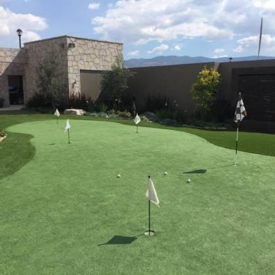 custom backyard artificial grass installers phoenix