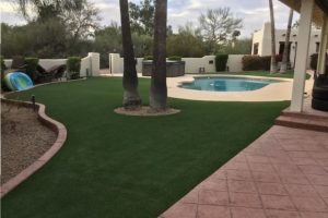 Scottsdale backyard artificial grass with pool and palm trees.
