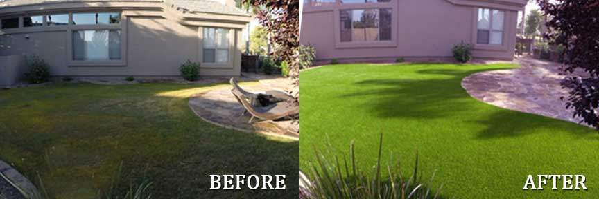 Backyard Grass Before and After