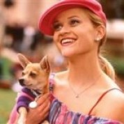 Legally-Blonde-Chihuahua_.lg