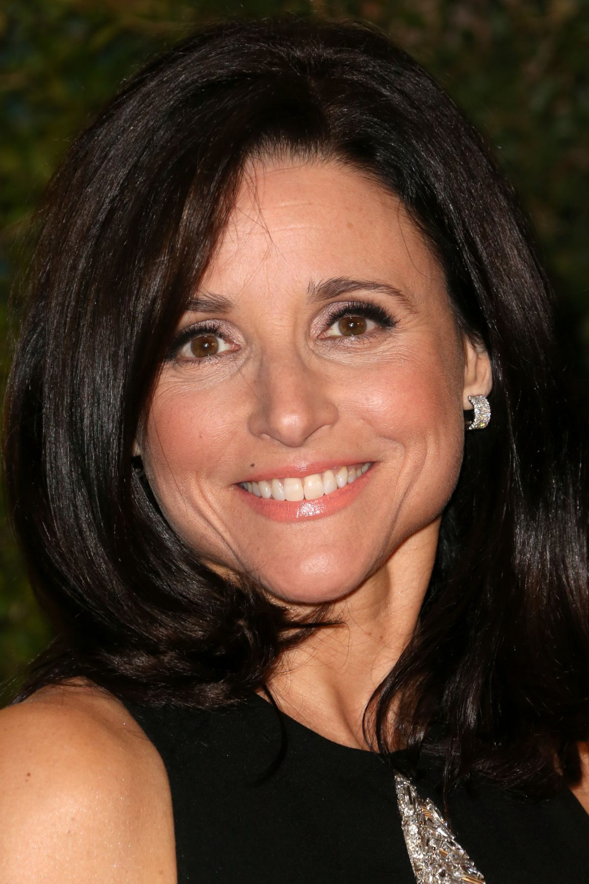 Julia Louis Dreyfus At The Academy Of Motion Picture Arts