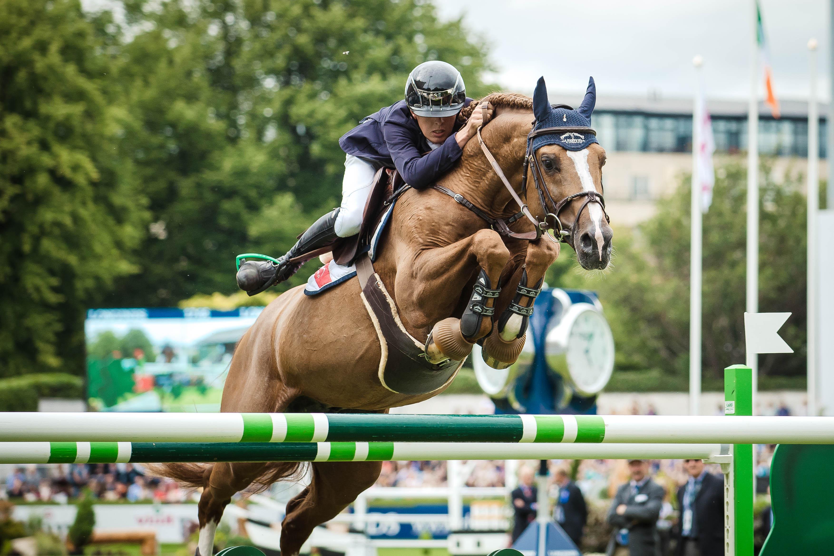 2015 Dublin Horse Show post thumbnail image