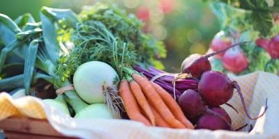fruites-verdures