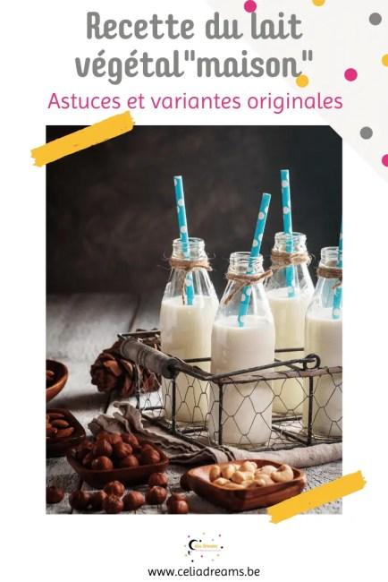 Recette de lait végétal maison (amande et variantes originales)
