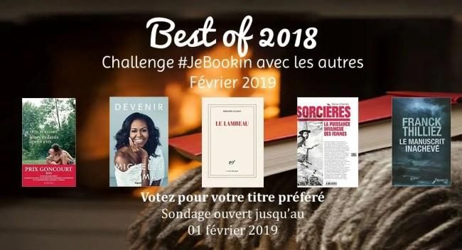 Participez au challenge #JeBookin avec les autres n°11 en votant pour votre titre préféré (clube de lecture belge - février 2019)
