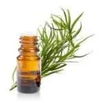 Huile essentielle estragon comme remède naturel pour soigner les allergies