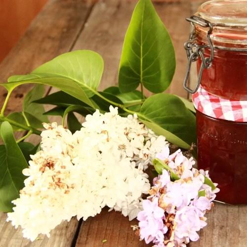 Recette facile et originale de confiture de fleurs de lilas