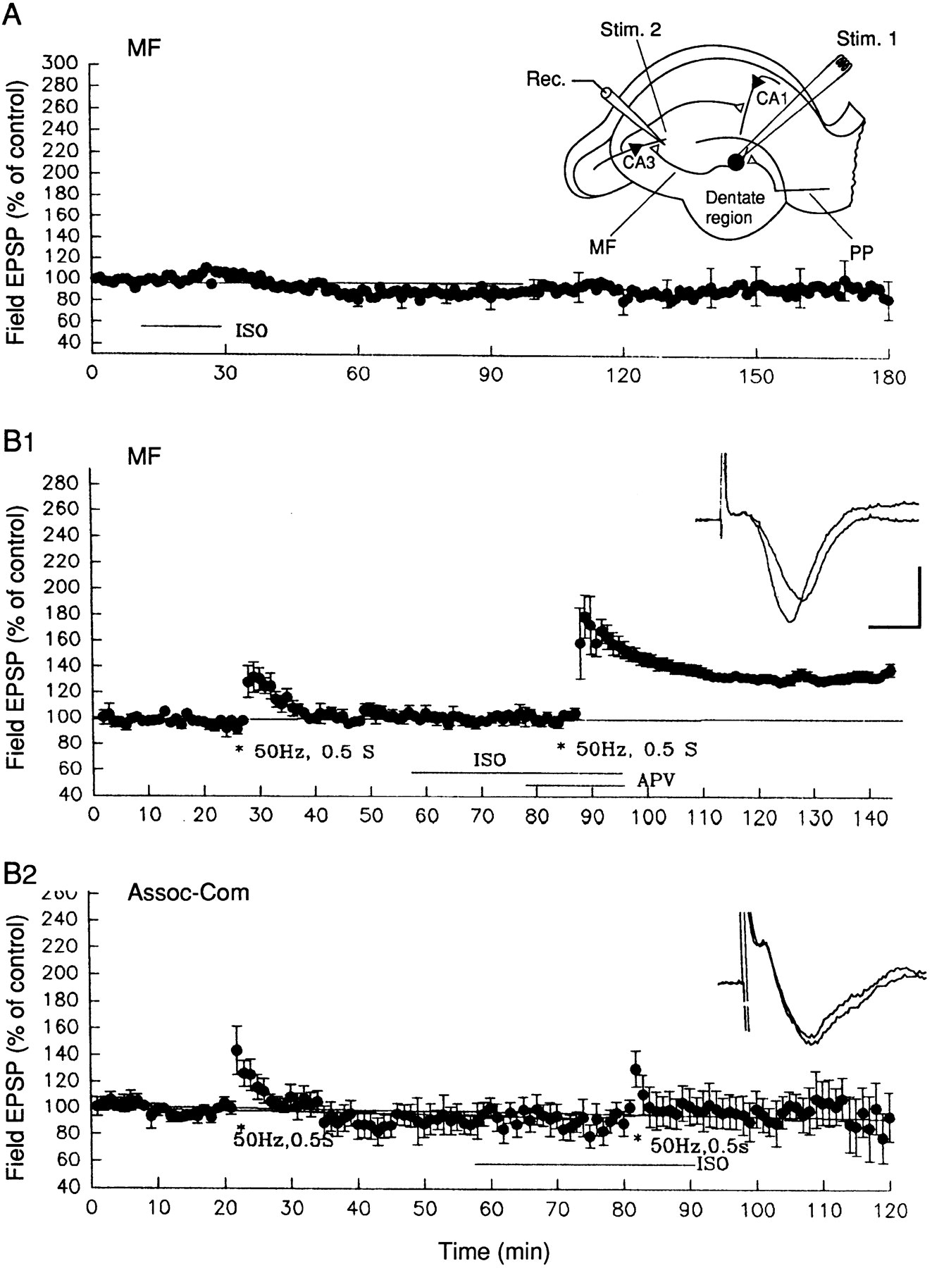Modulation Of Both The Early And The Late Phase Of Mossy