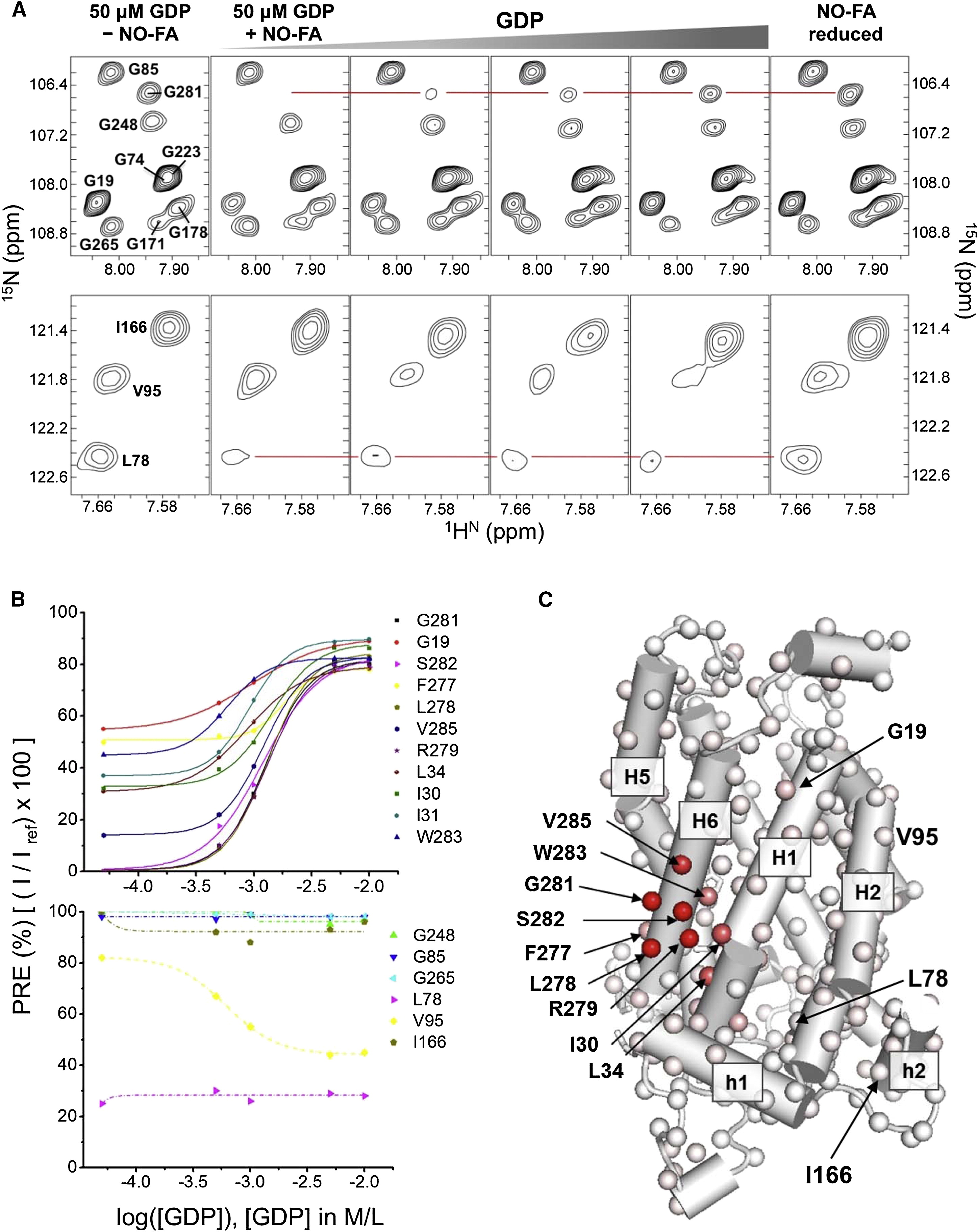Fatty Acid Flippase Activity Of Ucp2 Is Essential For Its Proton Transport In Mitochondria Cell