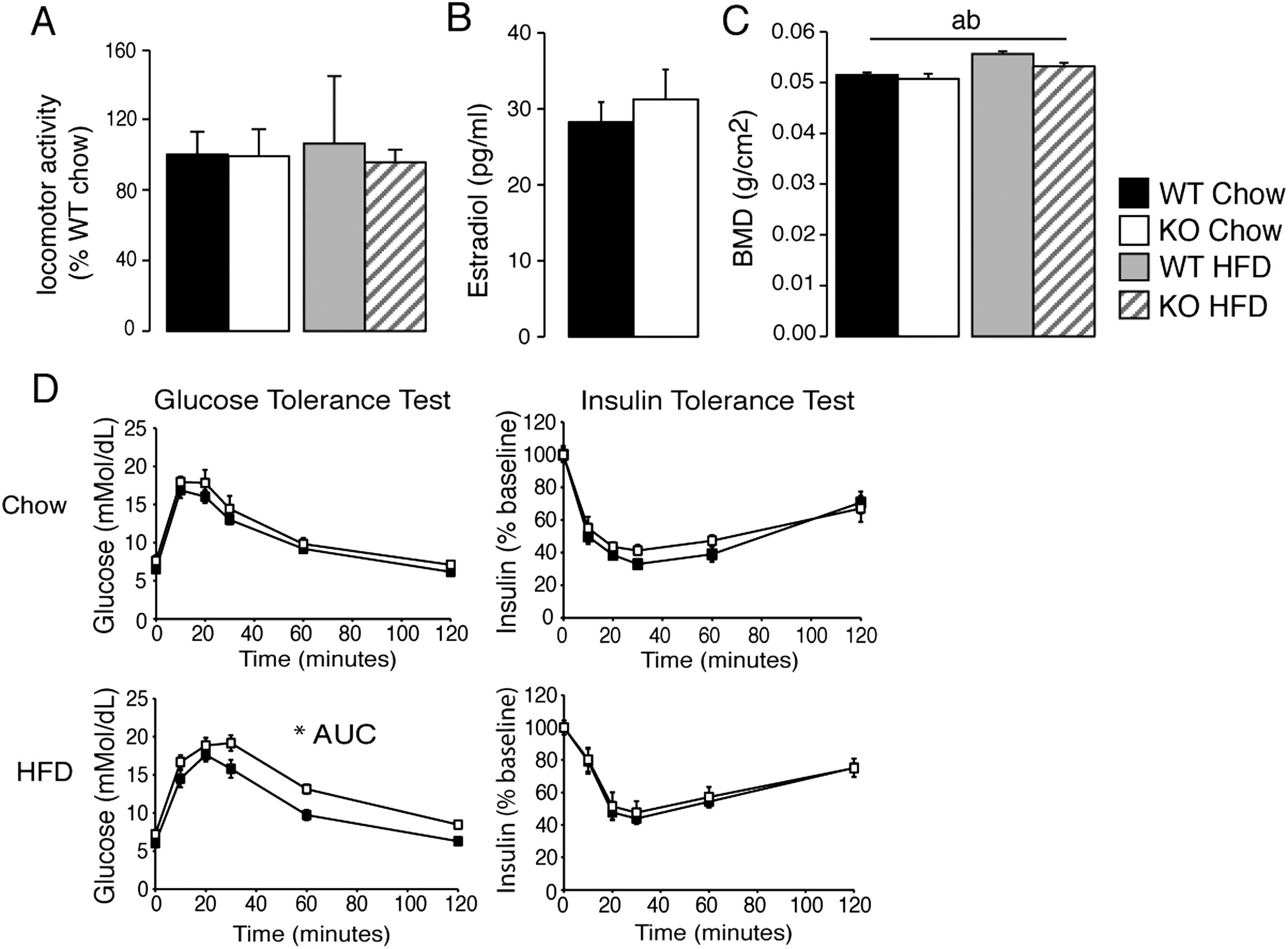 Bmp8b Increases Brown Adipose Tissue Thermogenesis Through