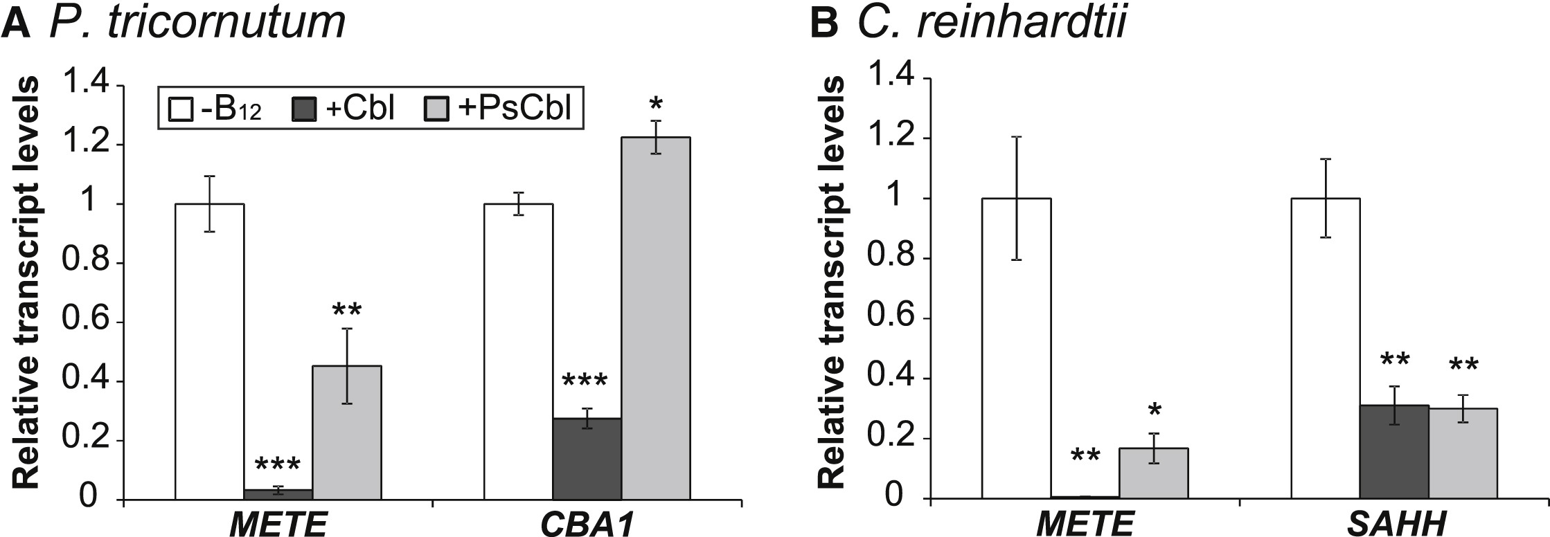 Cyanobacteria And Eukaryotic Algae Use Different Chemical Variants Of Vitamin B12 Current Biology