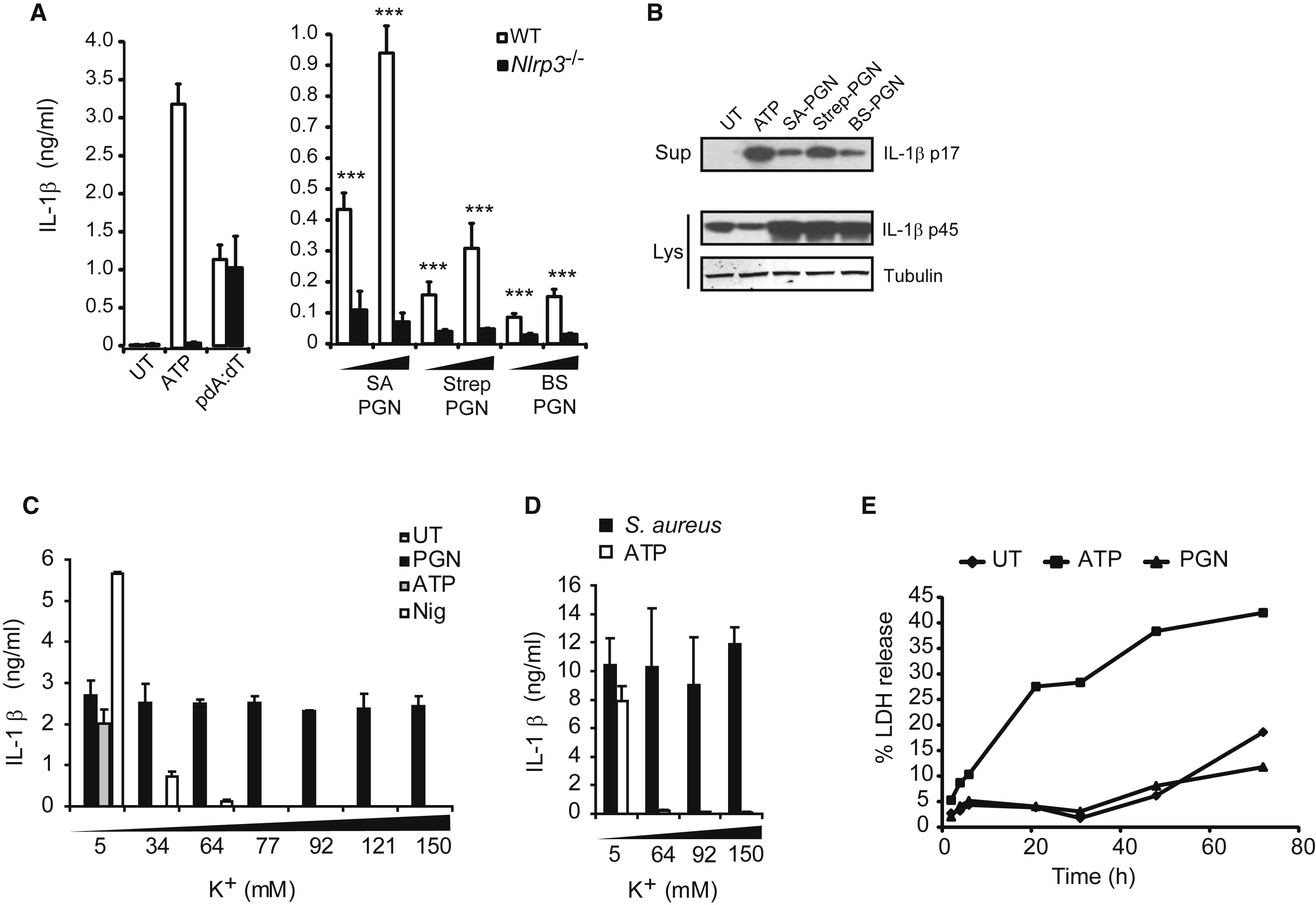 Hexokinase Is An Innate Immune Receptor For The Detection