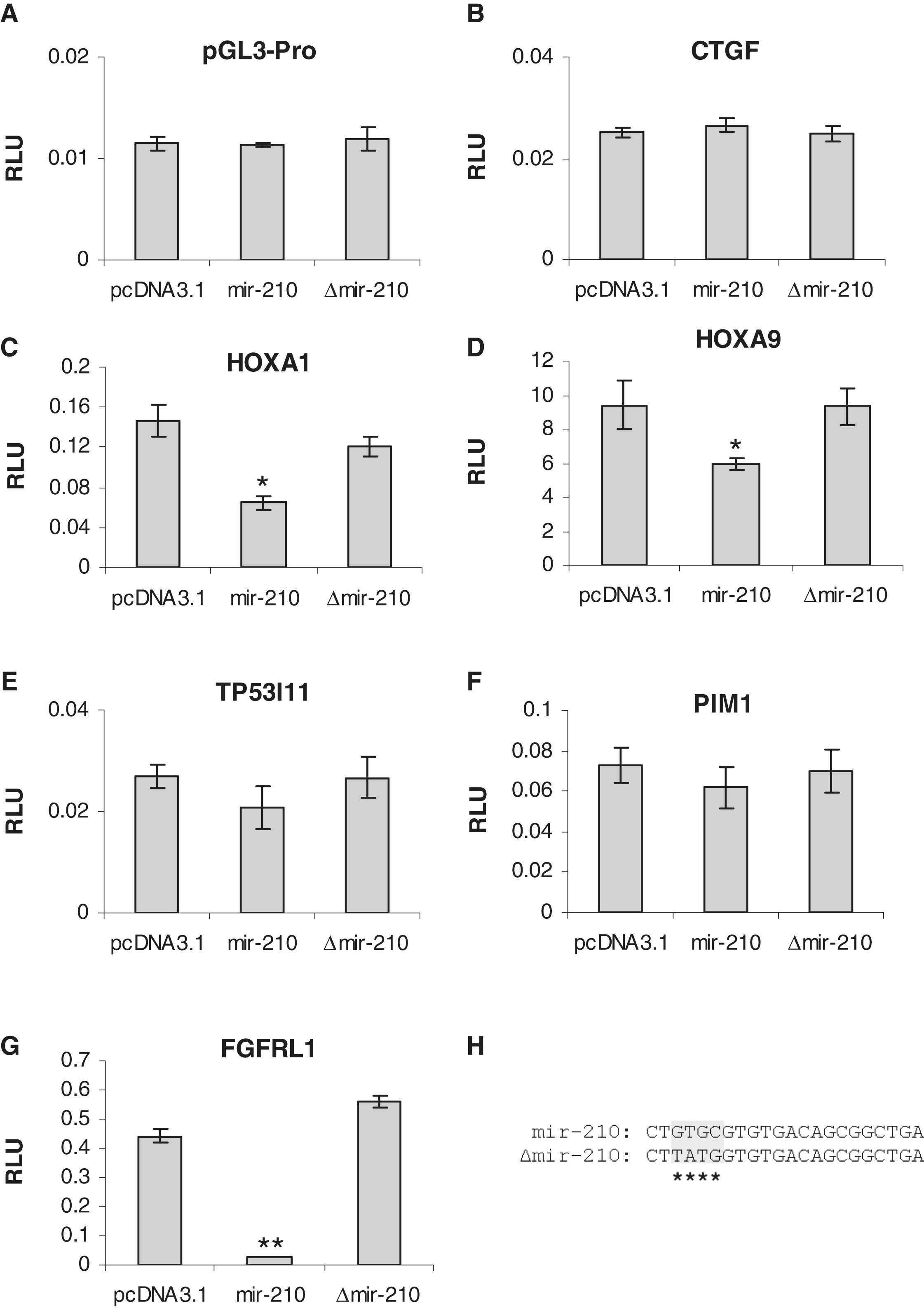 Hypoxia Inducible Mir 210 Regulates Normoxic Gene Expression Involved In Tumor Initiation