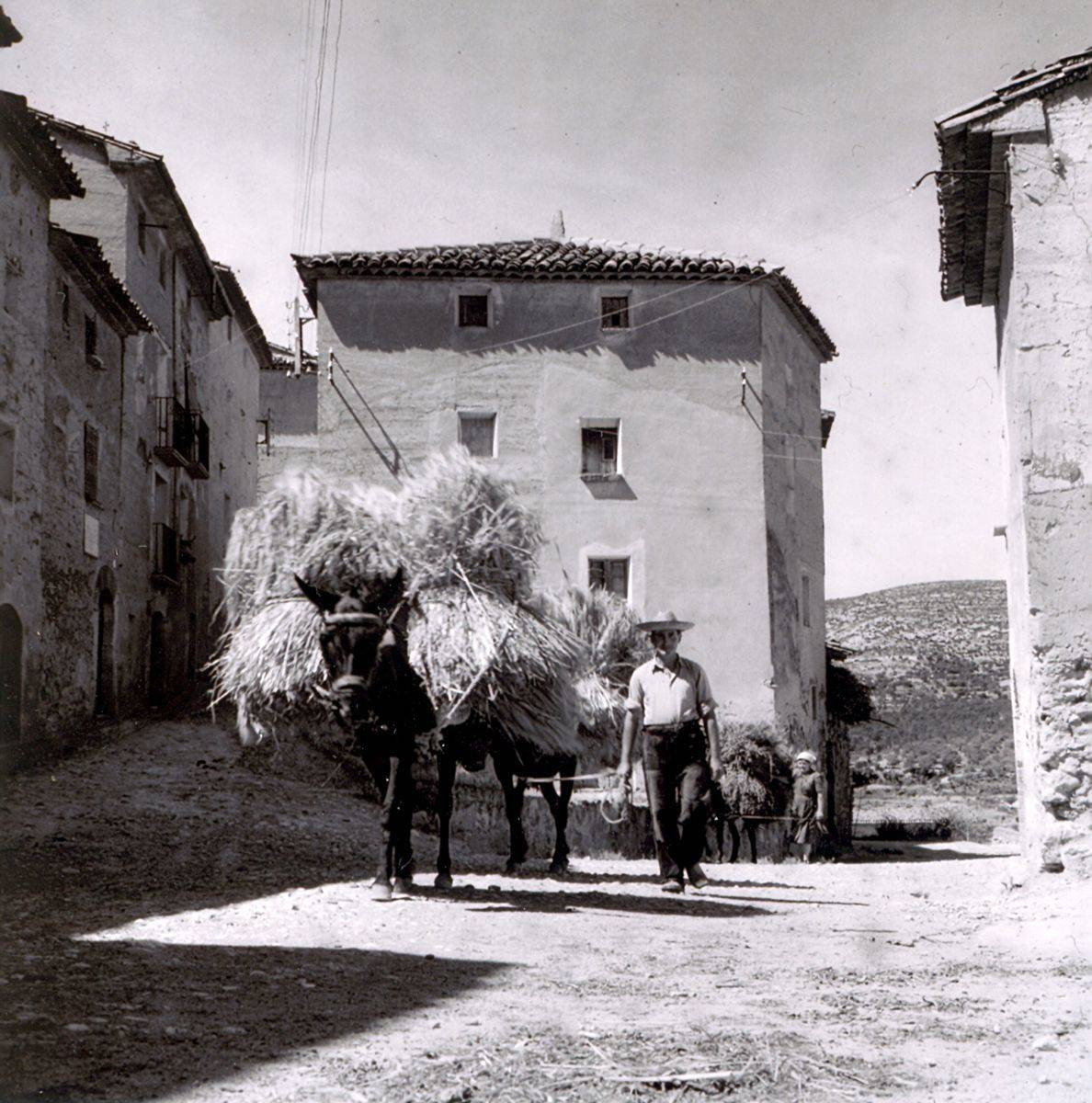 Baldellou, 1957: de vuelta con la mies (foto José María Canes Cuyás, fondo CELLIT, cedida a Fototeca de Huesca)