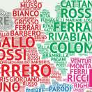 italian popular surnames genealogy