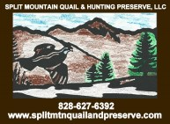 SPLIT MOUNTAIN QUAIL & PRESERVE