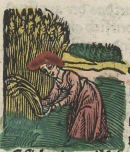 august augstmonet 1512