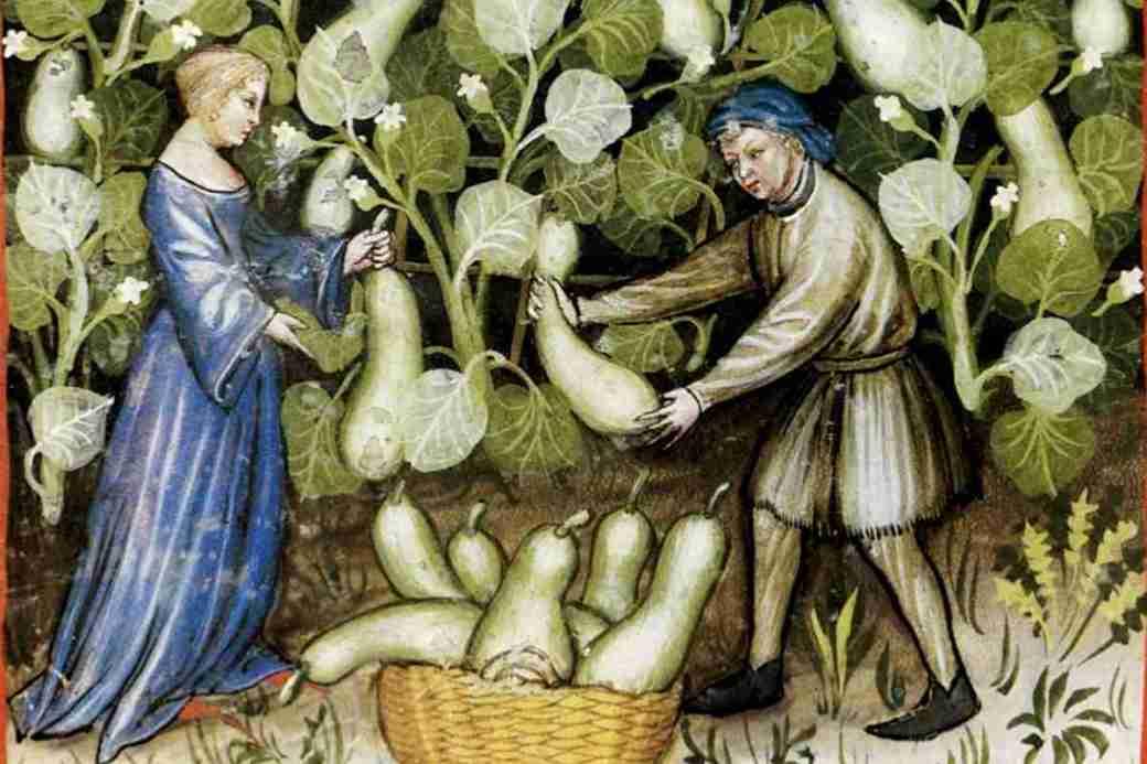 Kräutersammelkalender für den Monat September