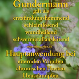 gundermann monographie