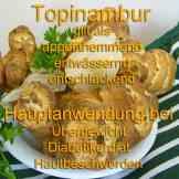 Steckbrief Topinambur