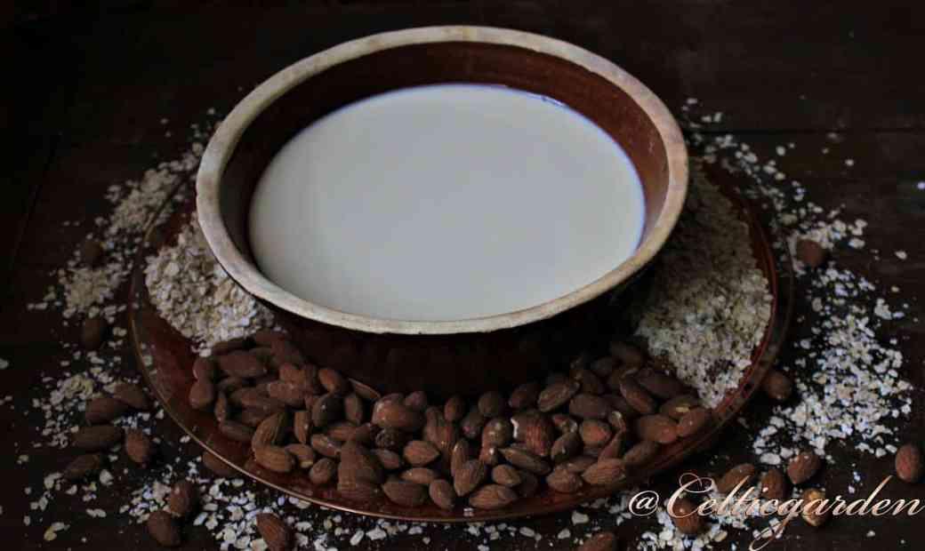 Pflanzenmilch selbermachen