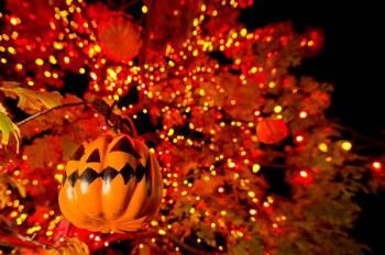 ray-bradbury-halloween-tree-wide-night-m