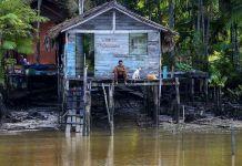 luz para a Amazônia