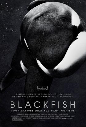 Blackfish-Furia-Animal_poster