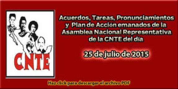 Acuerdos ANR 25 julio 2015