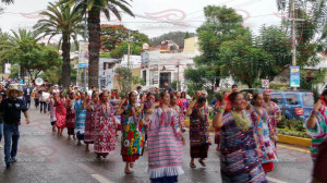 Convite X Guelaguetza Magisterial y Popular 2015(12)