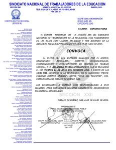 Convocatoria para la Asamblea Estatal Permanente el 24 de julio de 2015